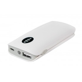 Power Bank 4000mAh 1 porta USB con Torcia Integrata Bianco/Grigio