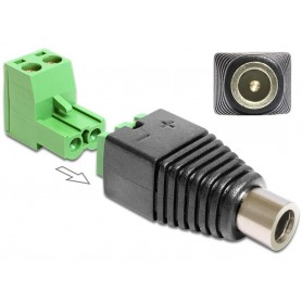 Adattatore DC 2.5x5.5 mm Femmina Terminal Block 2 pin