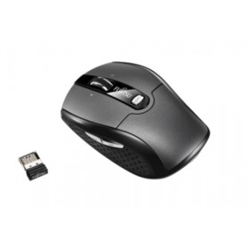 Fujitsu WI610 RF Wireless Laser 2000DPI Ambidestro Nero mouse